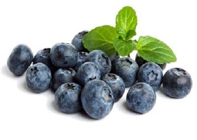 yiannis-blueberries_leaf