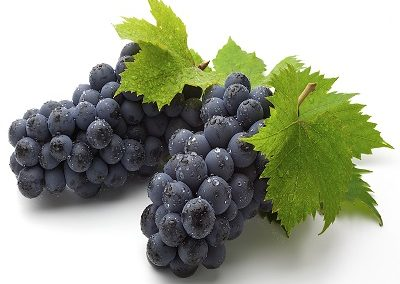 yiannis-grapes-purple
